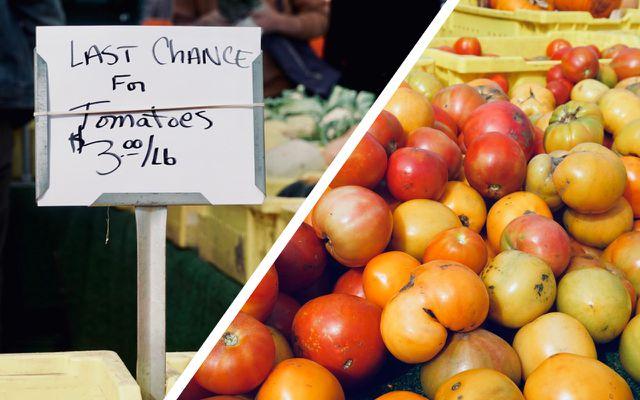 Season local organic foods tomatoes