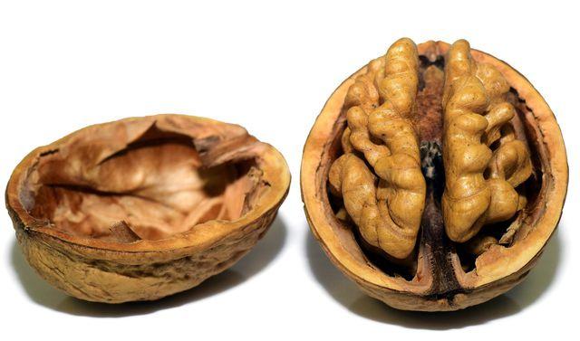 Ihr Aussehen erinnert an das menschliche Gehirn, und sie darf auch wegen ihrer Nährstoffe mit ihm assoziiert werden: Die Walnuss liefert nützliche Omega-3-Fettsäuren.