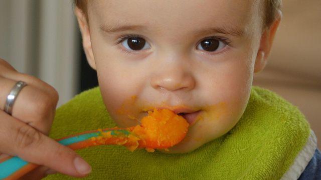 Babygläschen, Stiftung Warentest