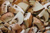 Bevor du die Champignons einfrierst, sollest du sie klein schneiden.