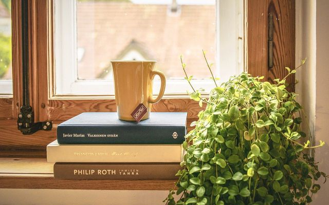 houseplants bookshelf