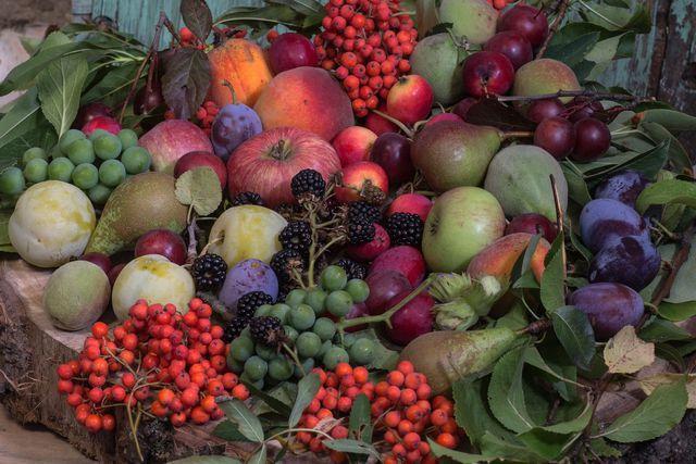 Die Römer brachten das Obst nach Europa.