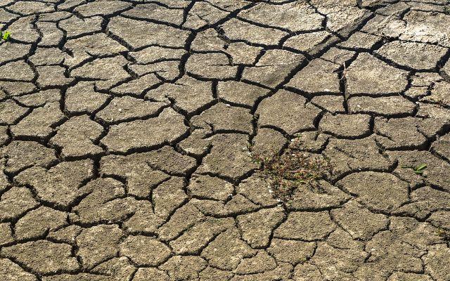 Der Klimawandel trifft vor allem Länder im globalen Süden stark