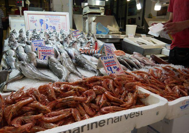 Eine Ursache der Überfischung sind industrieller Fischfang und eine riesige Nachfrage