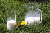 Frischmilch aus ökologischer Landwirtschaft gilt als die gesündeste Milch.