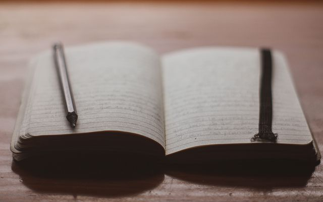 how to write a journal beginner