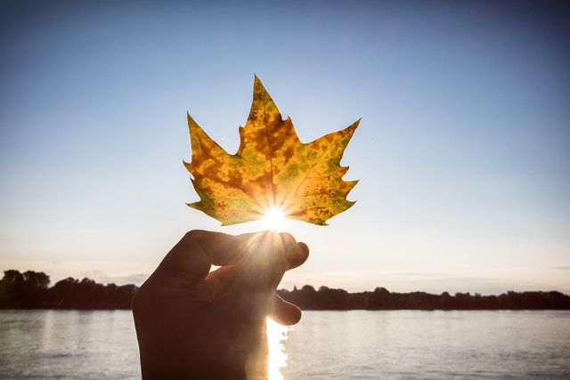 Der Blick für die schönen Momente vertreibt den Herbstblues.