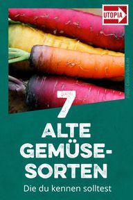 Vielfalt bewahren: Diese 7 alten Gemüsesorten solltest du kennen