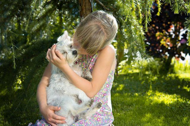 Hundeallergie: Häufige Symptome und Behandlung - Utopia.de