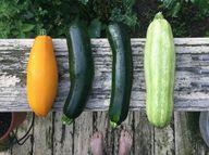 Achte bei den Zutaten für das Zucchini-Pesto auf Bio-Qualität.