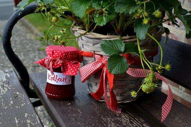 Wenn du Hängeerdbeeren regelmäßig gießt und düngst, kannst du bereits im Juni die ersten Früchte ernten.