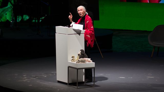 Jane Goodall in München