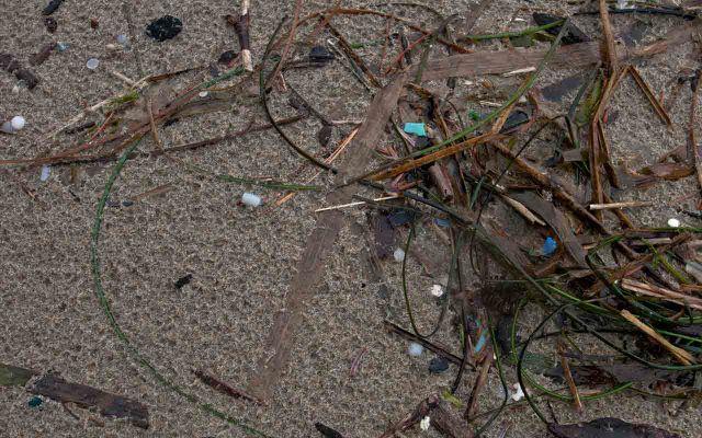 Mikroplastik – Plastikteile, die klener sind als 5 mm – stellen den größten TEil des Plastikmülls in den Meeren dar.