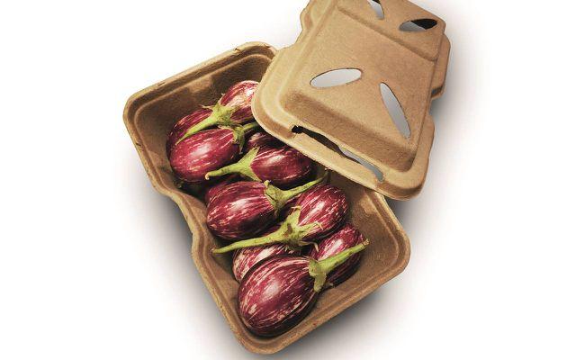 Bio-Lutions Verpackungen Pflanzenreste