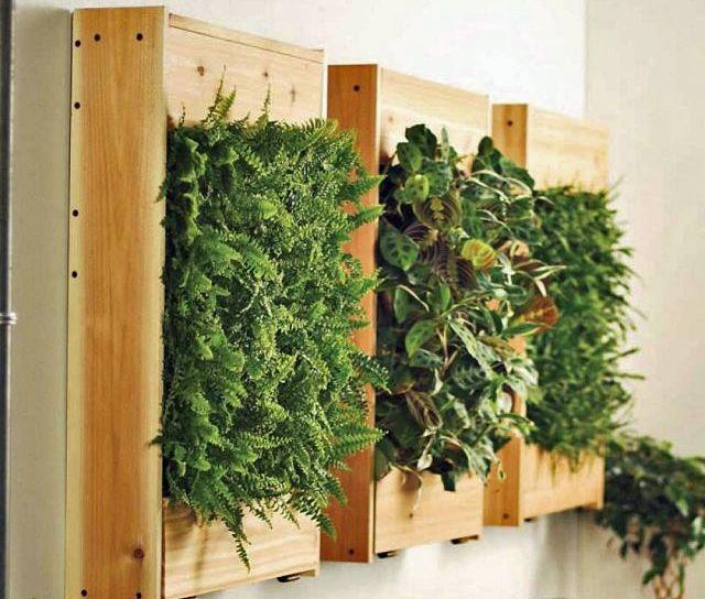 Mehr als nur Deko: 13 kreative Ideen für mehr Grün in der ...
