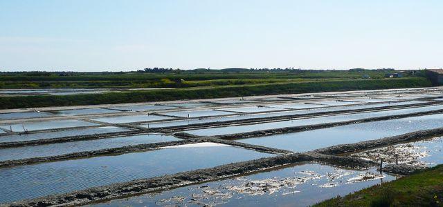 Saline: Farm für Fleur de Sel