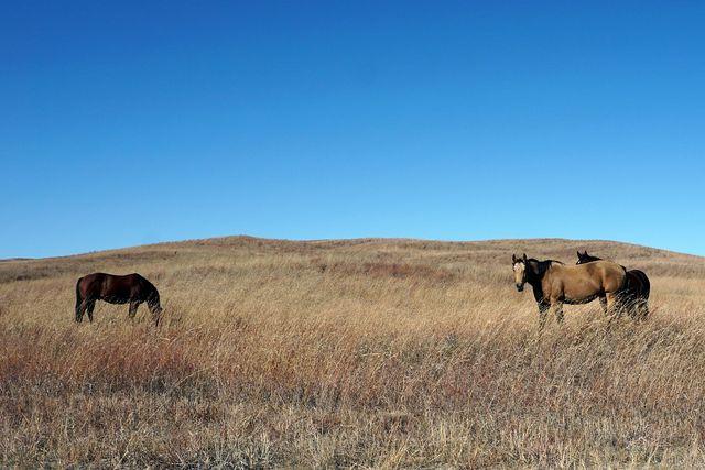 Wide open space in Nebraska.