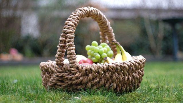 Picknick nachhaltig in der Natur