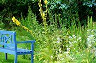 Ein Gartenteich ist für viele Menschen ein Ort der Ruhe und Entspannung