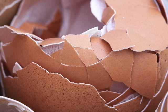 Eierschalen sind ein natürlicher Calciumlieferant und können zu einem nahrungsergänzenden Pulver verarbeitet werden.