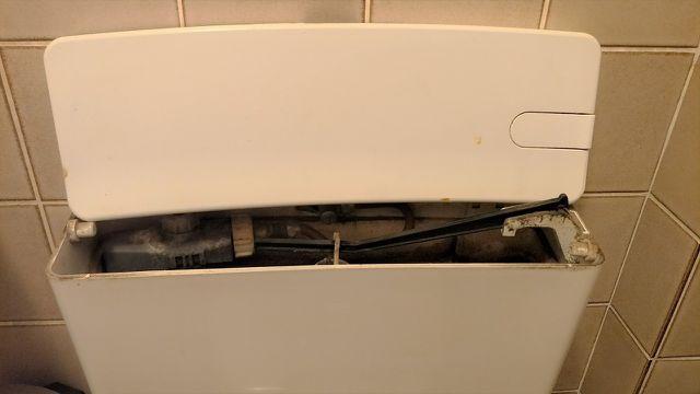 Toilettenspülung entkalken