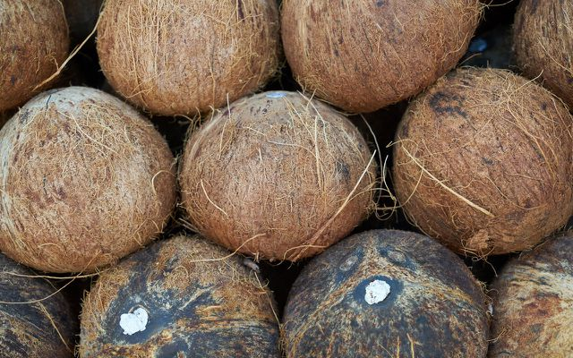 Kokosöl – getrocknete Kokosnüsse