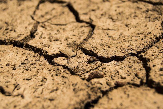 Dürre, Ernteausfälle, Flucht - mögliche Folgen der Wasserknappheit