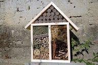 Die richtige Höhe ist ein wichtiger Faktor, um den perfekten Standort für dein Insektenhotel zu finden.