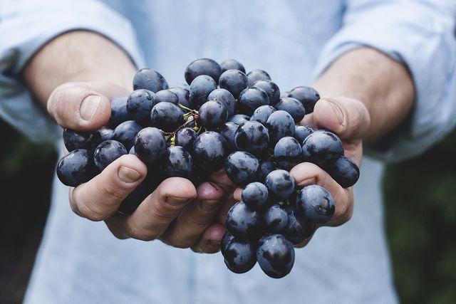 Mit frischen Weintrauben schmeckt dein Traubensaft besonders lecker.