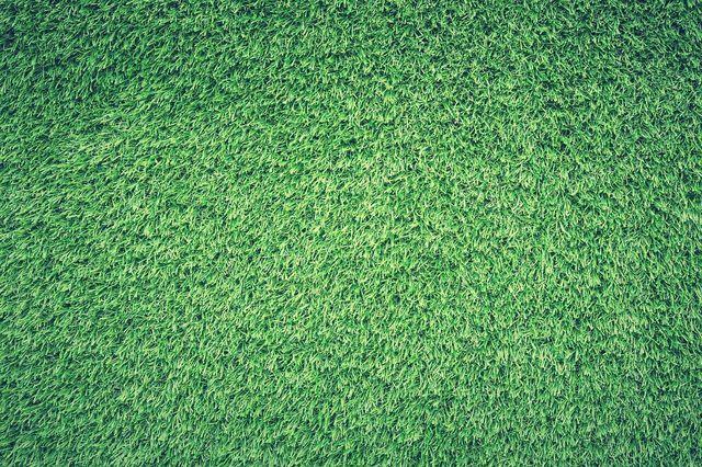 Zuerst den Rasen kurzmähen, dann vertikutieren.