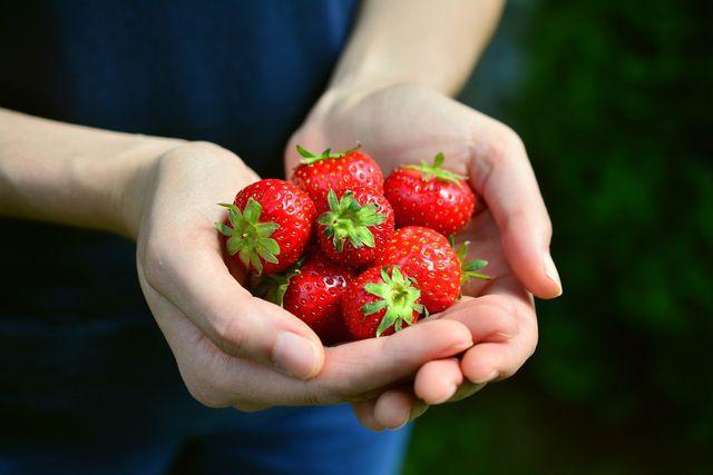 Obst aus der Region muss keine langen Wege zurücklegen.