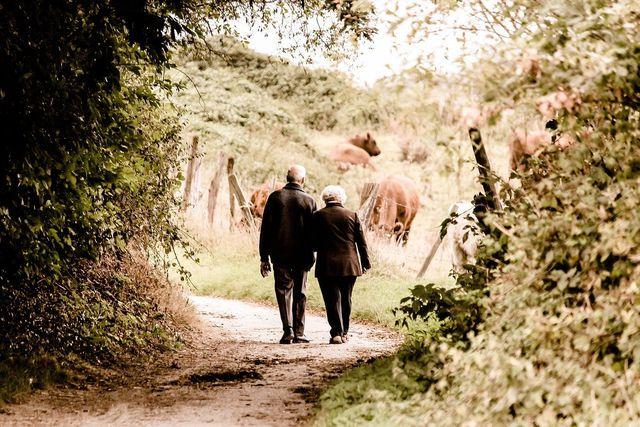 Zur Mayr-Kur gehören auch Spaziergänge an der frischen Luft.