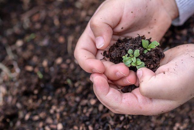 Nur Kleinbäuer*innen mit Zugang zu Land, Wasser und Saatgut können agrarökologisch wirtschaften.