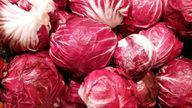 Radicchio ist ein typisch italienischer Blattsalat.