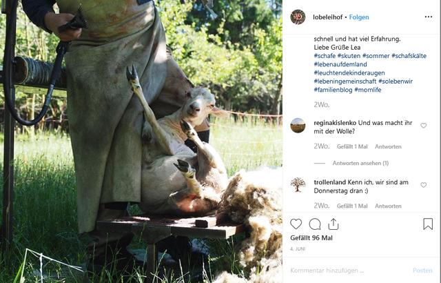 Lobeleihof bei Instagram.