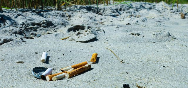 Are cigarette butts biodegradable? Sadly, no.