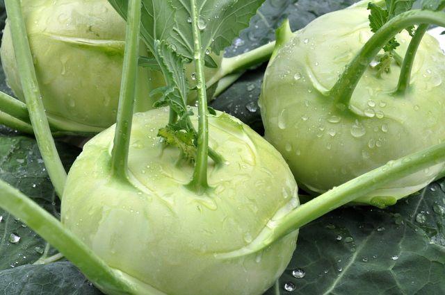 Kohlrabi-Carpaccio bereitest du am besten mit frischem und regionalem Kohlrabi zu.