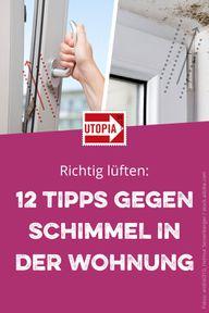 Richtig lüften: 12 Tipps gegen Schimmel in der Wohnung