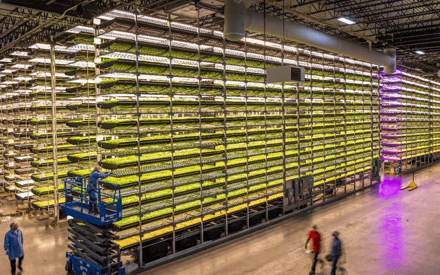 Vertical-Farming-Farms-Aerofarms