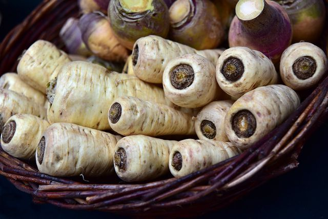 Der Großteil der Vitamine steckt direkt unter der Schale der Pastinaken.