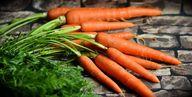 Obst und Gemüse enthalten lebenswichtige Vitamine und Mineralien für den Hund.