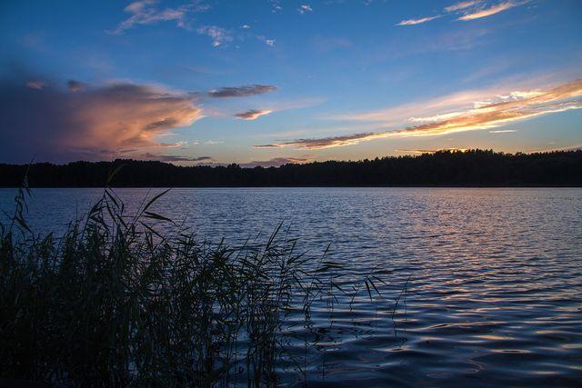 Zahlreiche Seen sind gestaltgebend für den Müritz-Nationalpark