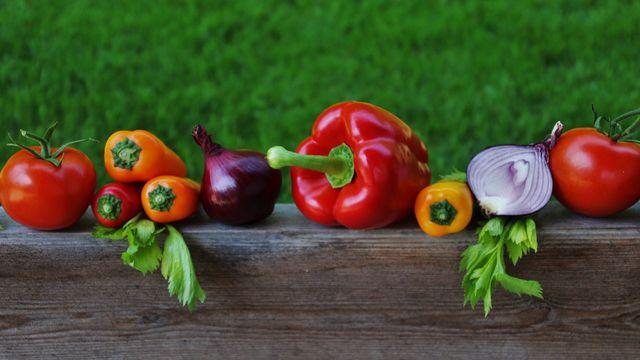 Ob grün, rot, gelb oder lila: Eine ausgewogene Ernährung mit viel Gemüse ist gesund.