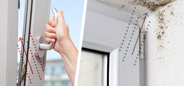 Richtig lüften: 12 Tipps – Schimmel in der Wohnung vermeiden ...