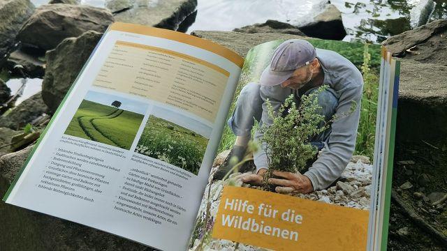 """Unser Lese-Tipp: Das Bienen-Buch """"Wir tun was für Bienen"""""""