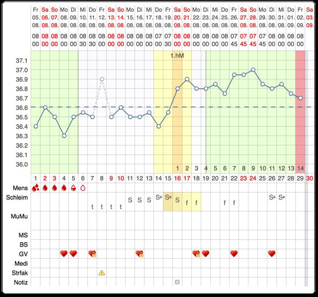 Ein Beispiel eines Zyklus-Blatts von myNFP