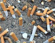 Zigarettenstummel Kippe Rauchen Umwelt Abfall Müll