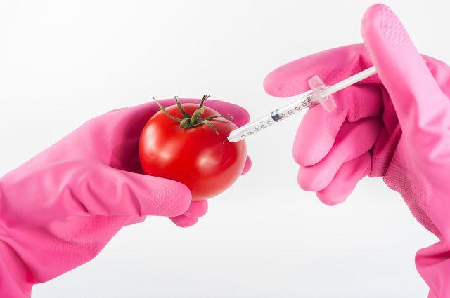 Die ökologische Landwirtschaft meidet künstliche Pestizide.