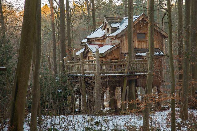 Technikfreier Urlaub in einem Baumhaus im Wald ist ein Garant für einen entspannten Urlaub.