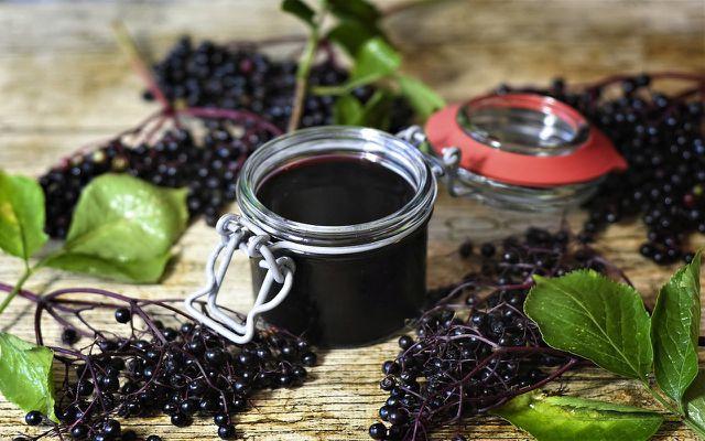 wild elderberry jam
